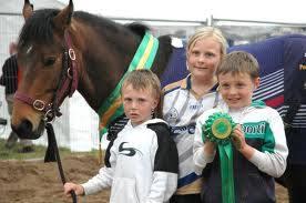 Ballinasloe Horse Fair 2006